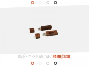 Pendrive Wood 8Gb, 10 SZT.